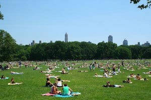 full-immersion.com-EC-New-York-inglese-a-central-park