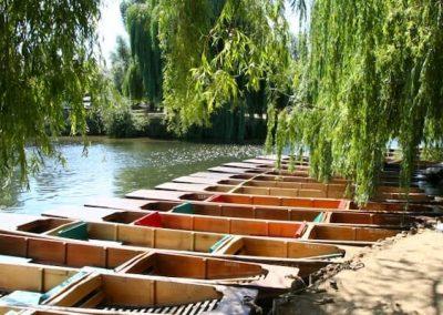 CAMBRIDGE23